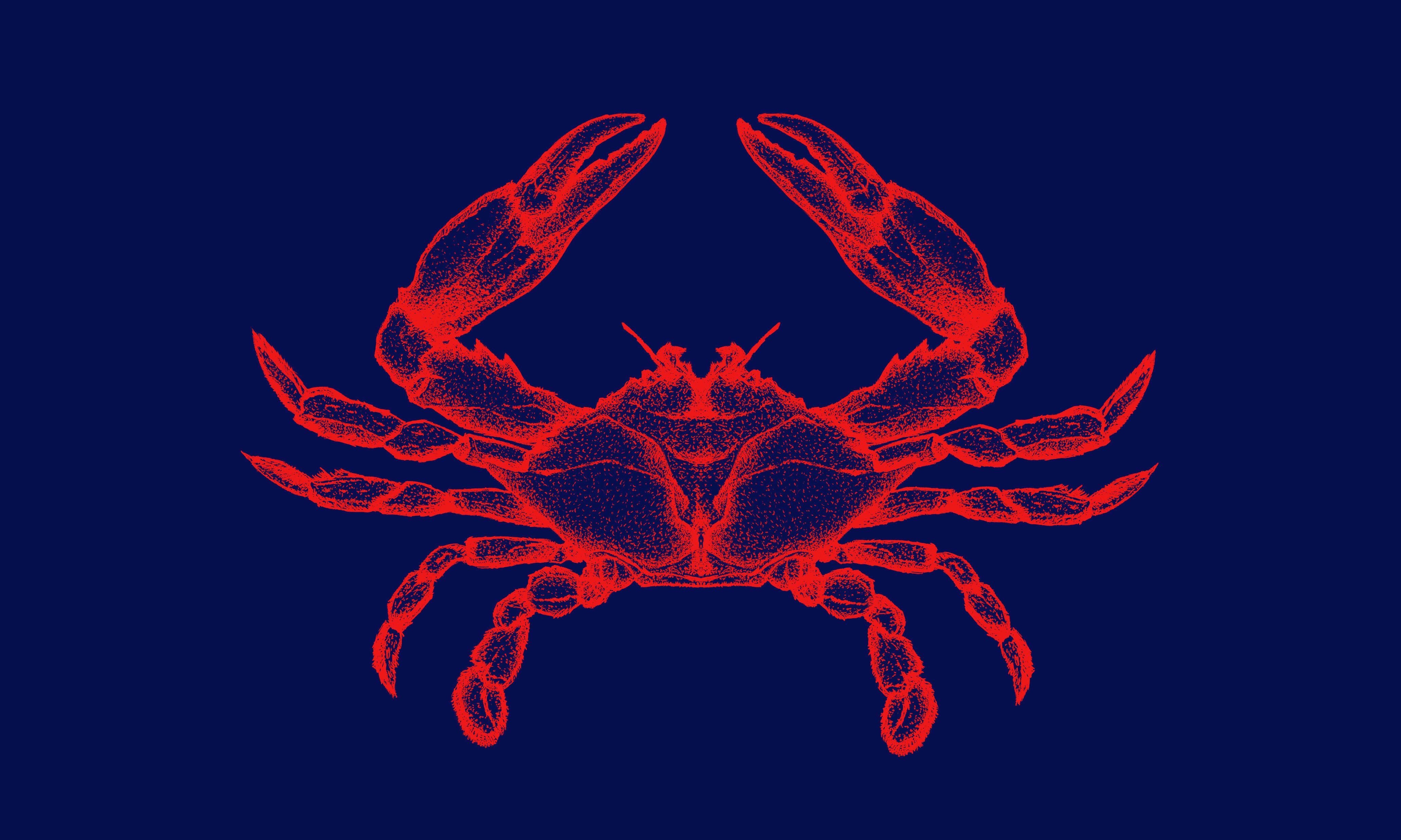 Otero Crab Meat // Dibujo a Mano del Cangrejo